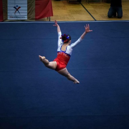 Girls Platinum Level Gymnastics